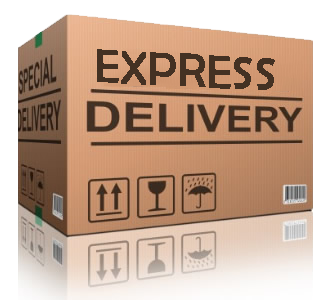SECURE EXPRESS DELIVERY