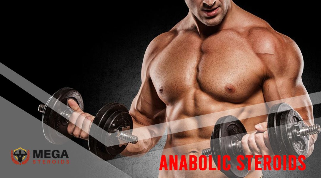 Anabolic Steroids: Uses, Benefits, Risks, and Safety