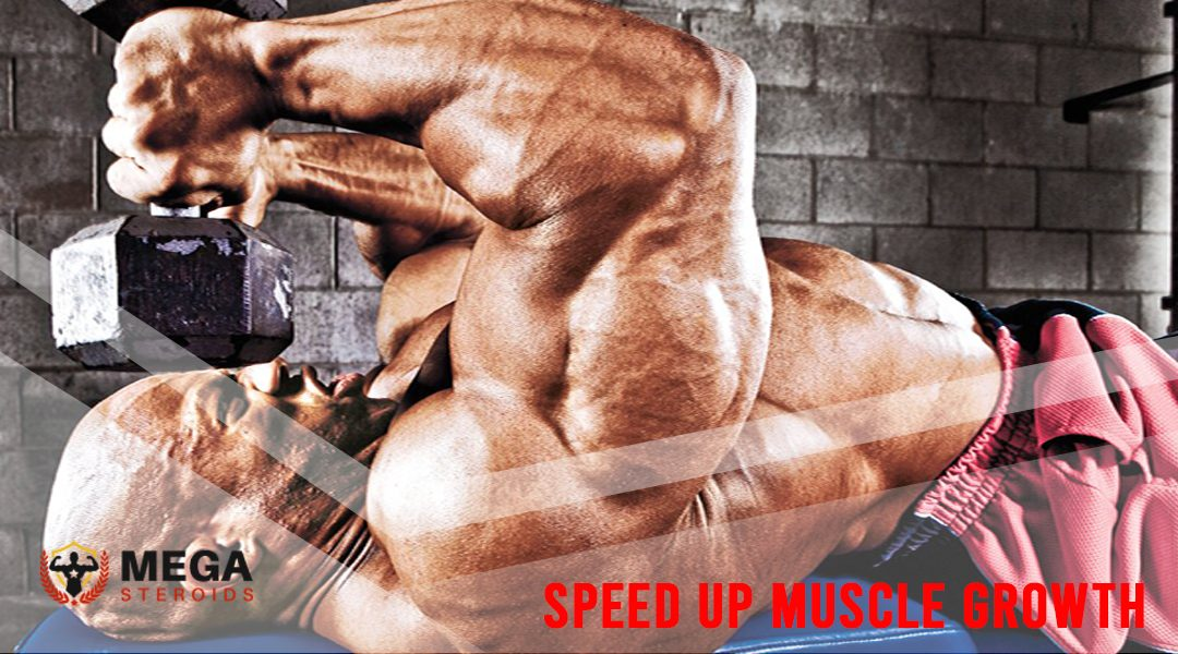 What are the Best tips for Speed Up Muscle Growth?