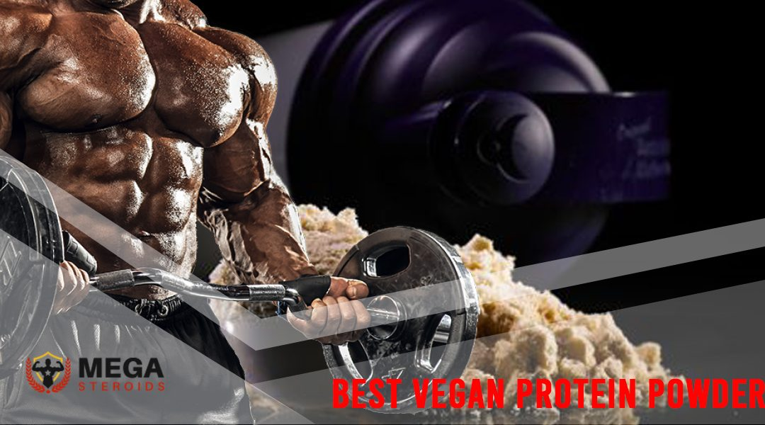 What is the Best Vegan Protein Powder for Muscle Building?